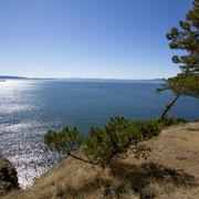 Oceanfront Saturna Island