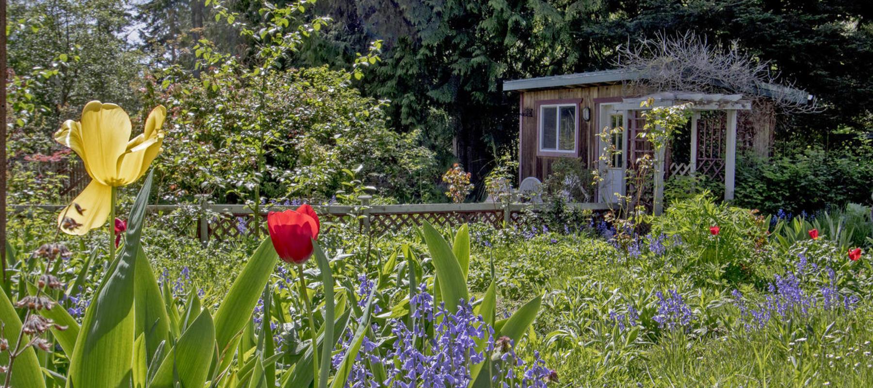 Sunny garden Magic Lake