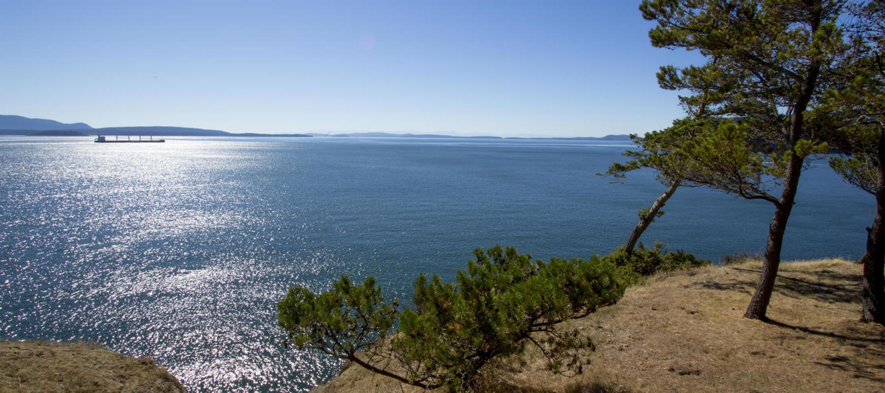 Oceanside Views Saturna Island