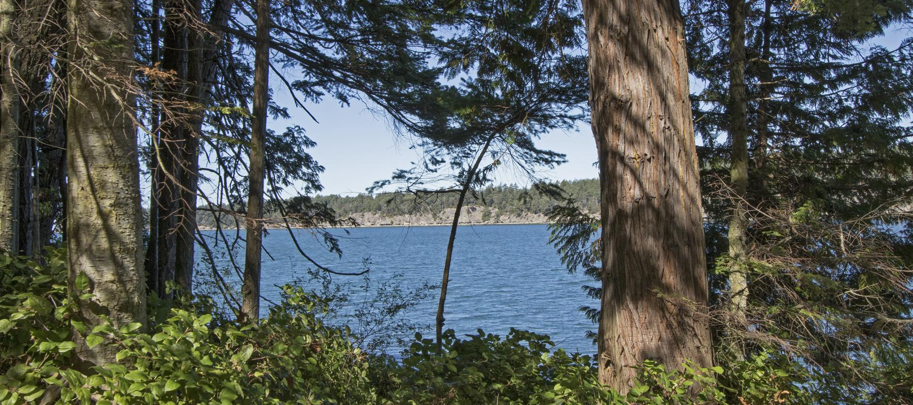 Saturna Island, Waterfront lot, Dockside Realty, Michael Vautour